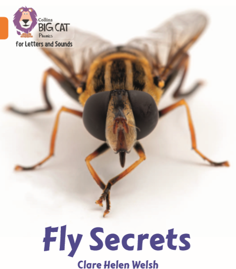 https://www.amazon.co.uk/Collins-Big-Phonics-Letters-Sounds-ebook/dp/B086B8SRXR/ref=sr_1_1?dchild=1&keywords=FLY+SECRETS+clare+welsh&qid=1604231698&s=books&sr=1-1